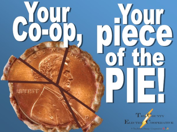 Your Co-op, your piece of the pie graphic with image of penny cut into pie like pieces